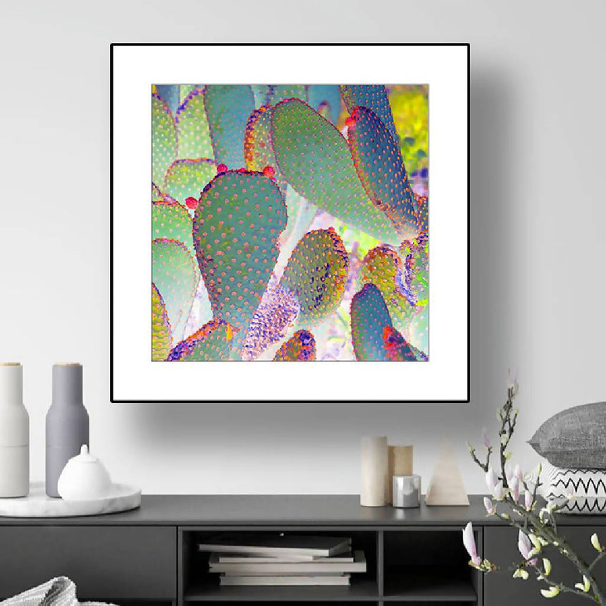 Good Morning Cactus! Print with white mat, 16x16 inch. Home Delphine B Photography