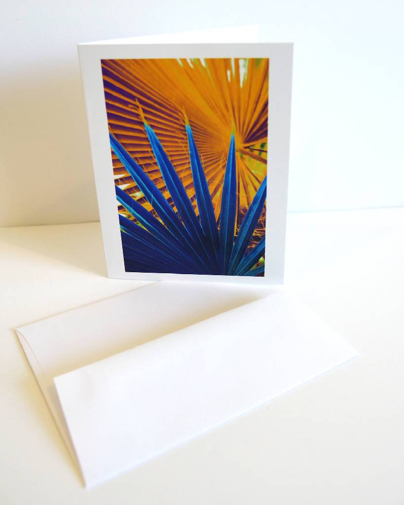 Note Card Set - Colorful Palm Trees, 6 different note cards with enveloppes Home Delphine B Photography