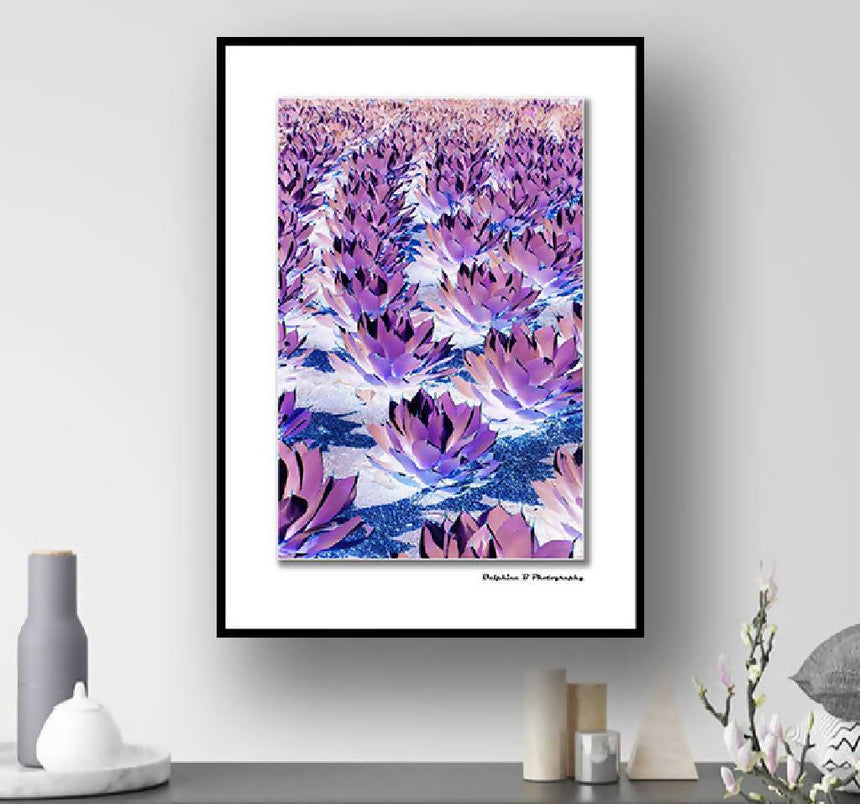 Purple Agave Infinity, PRINT with white mat, 11X14 inch. Home Delphine B Photography