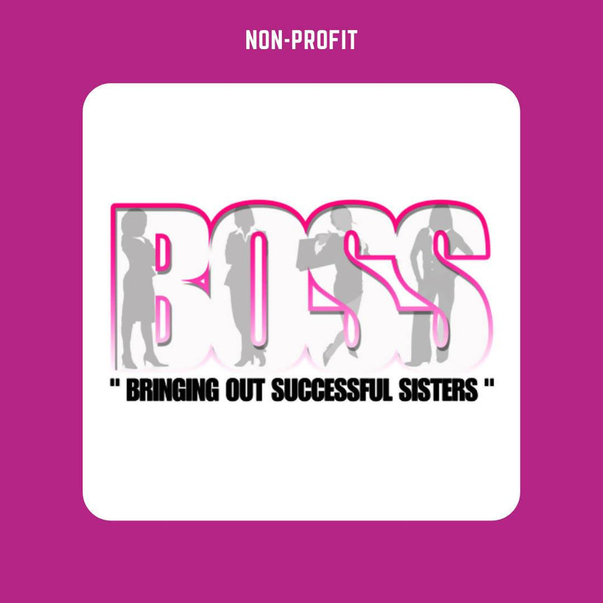 The BOSS network Non-Profits The BOSS network