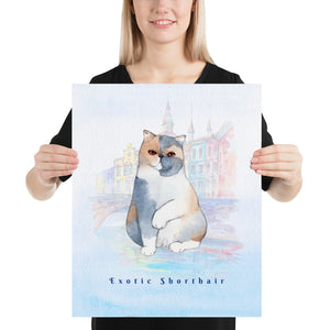 Exotic Shorthair Cat Pet Art - Customizable Hand Drawn Watercolor Style Poster For Pet Lovers