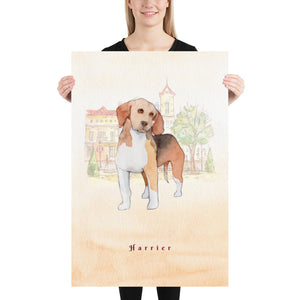 Harrier Dog Pet Art - Customizable Hand Drawn Watercolor Style Poster For Pet Lovers - Next Art Lab