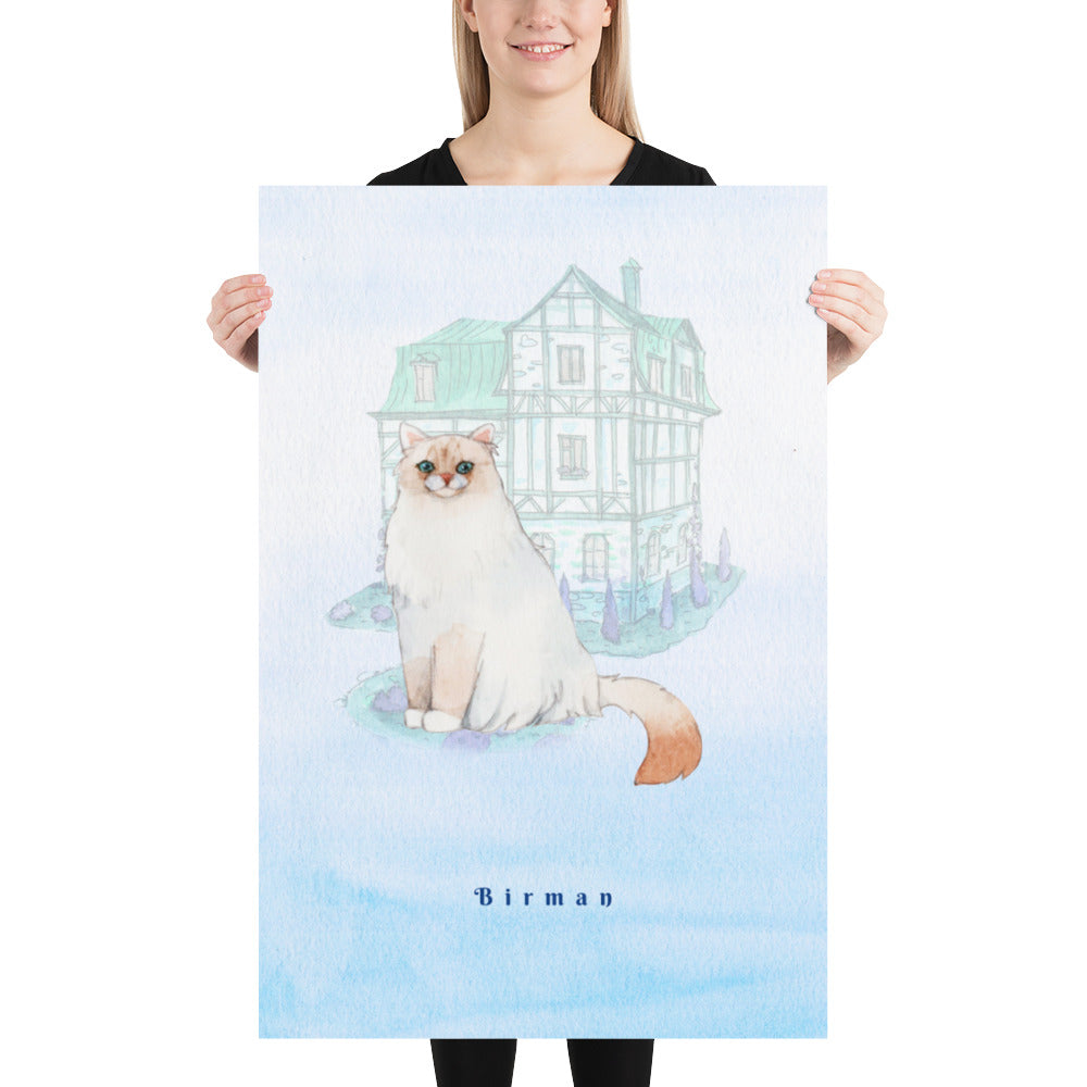 Birman Cat Pet Art - Customizable Hand Drawn Watercolor Style Poster For Pet Lovers
