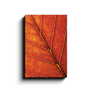 Open image in slideshow, Fall Leaf Canvas - Designed By Nature - Premium Canvas By Next Art Lab