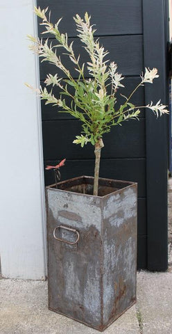 Zinc Container - HomeStreetHome.ie