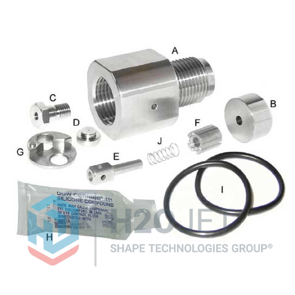 Check Valve Upgrade Kit (old 301040-1)