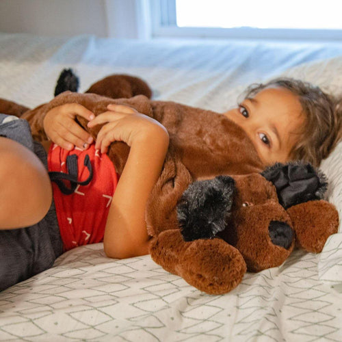 Huggaroo Weighted Lap Pad - Plush Puppy, 3.6 lb, Washable, Brown-HWLP1DBP