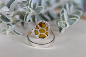Honeycomb Amber Ring - Size 9.5