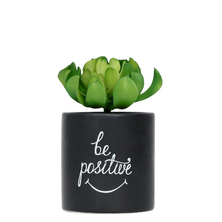 Be Positive pot plant, Pot plant-[ Projectgenz][Daretodreamshop]