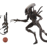 Aliens 7 Inch Action Figure Series 14 - Set of 2 (Alien Warrior - Ripley)