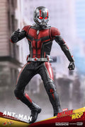 Ant-Man and the Wasp 12 Inch Action Figure Movie Masterpiece 1/6 Scale Series - Ant-Man Hot Toys 903697