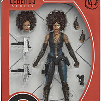 Marvel Legends Deadpool 6 Inch Action Figure - Domino