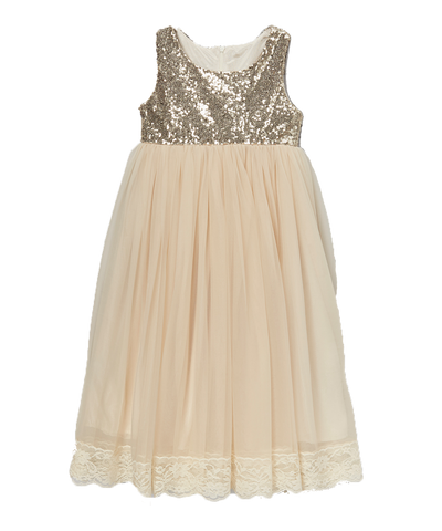 Sequined Glitter Chiffon Ivory Dress
