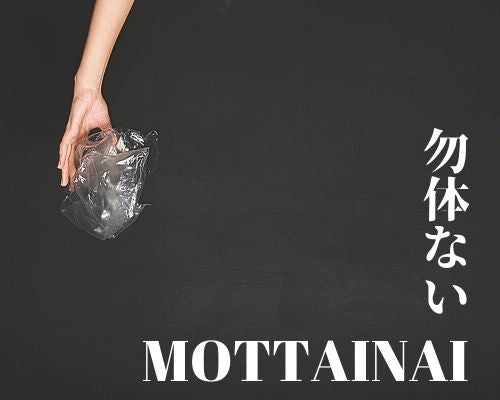 What is MOTTAINAI?