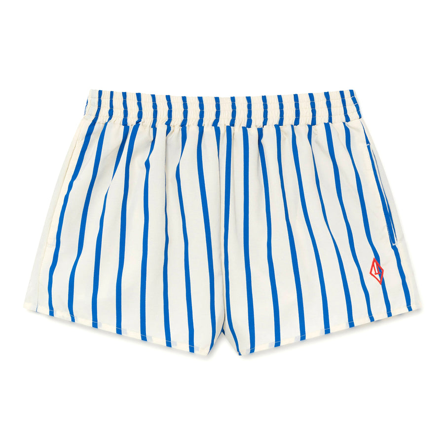 Blue Stripes Puppy Swimsuit