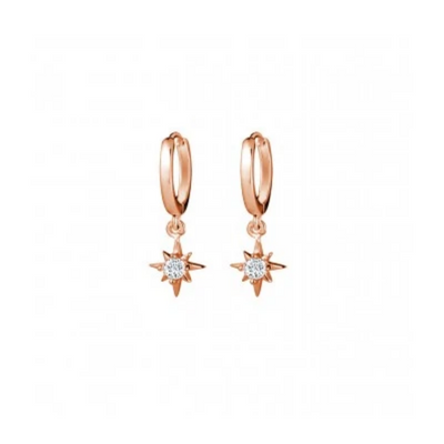 Saint Earrings in Rose Gold