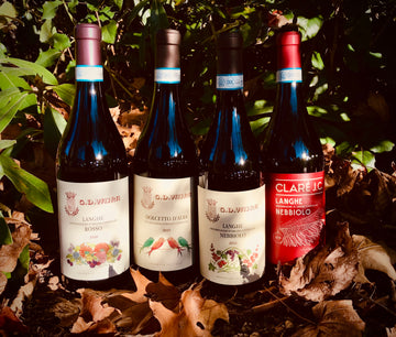 Piedmont Perennial Over-Performer: The Wines of G.D. Vajra 4-Pack Exploration