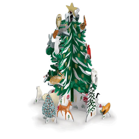 Christmas Conifer Pop & Slot Calendar