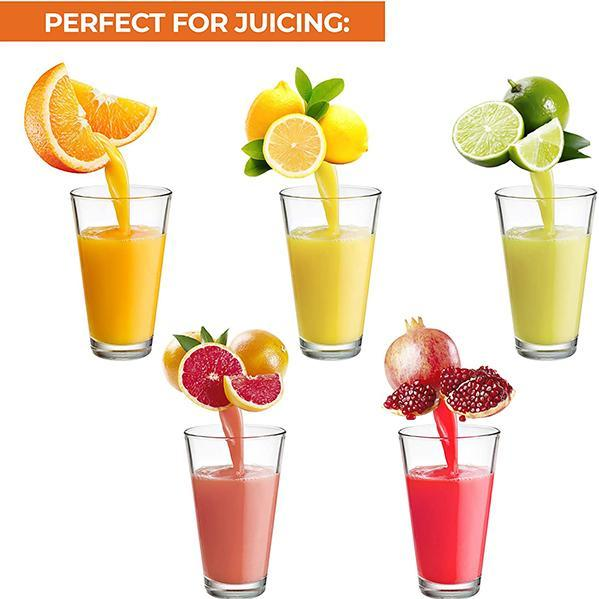 Portable fruit and vegetable juicer