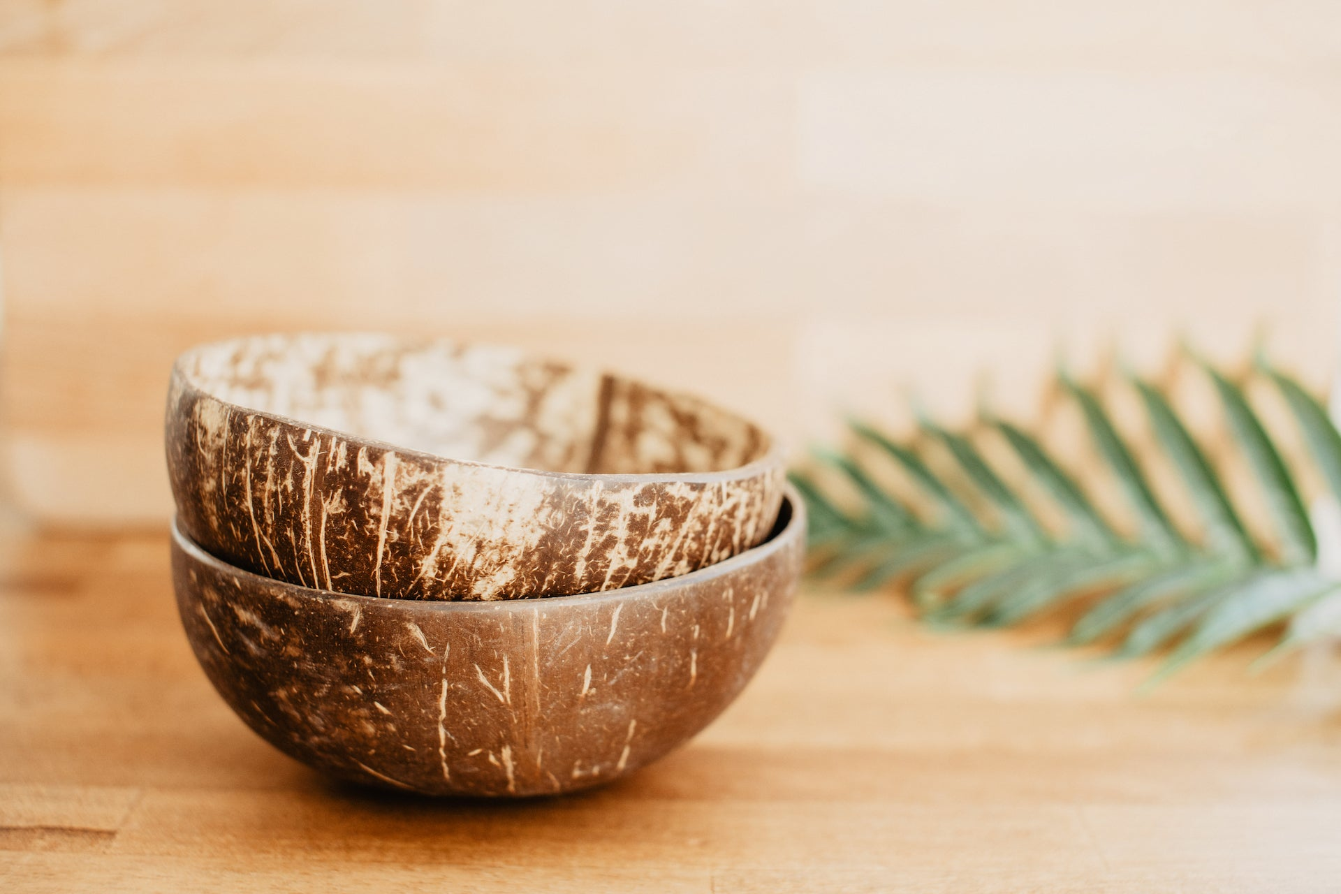 Bambaw Coconut Bowl Polished (2 In Set)