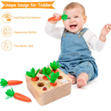 Enjoy fast, free nationwide shipping!  Owned by a husband and wife team of high-school music teachers, Redtailtoys.com is your one stop shop for quality toys & gifts like our Wooden Carrot Shape Size Sorting Game.
