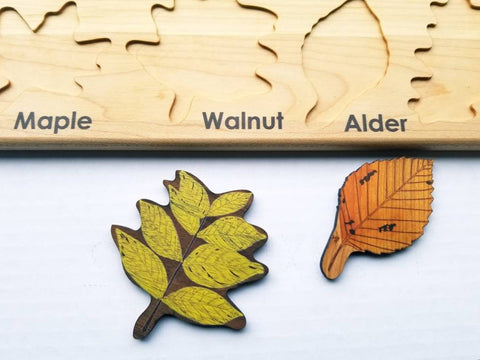 Enjoy fast, free nationwide shipping!  Owned by a husband and wife team of high-school music teachers, Redtailtoys.com is your one stop shop for quality toys & gifts like our Handmade-in-USA Montessori Leaf w/ Respective Woods Board Puzzle.