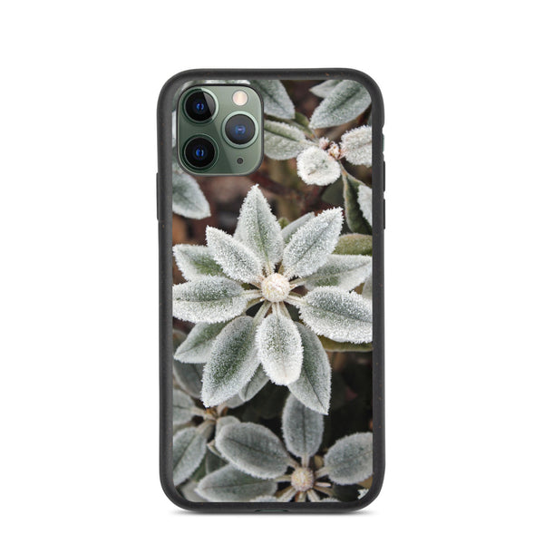 Frost Biodegradable iPhone Case