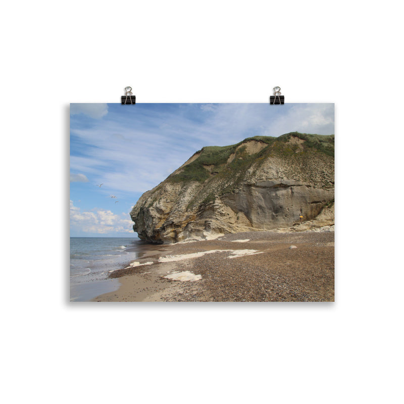 Bulbjerg Bird Cliff Matte Paper Poster
