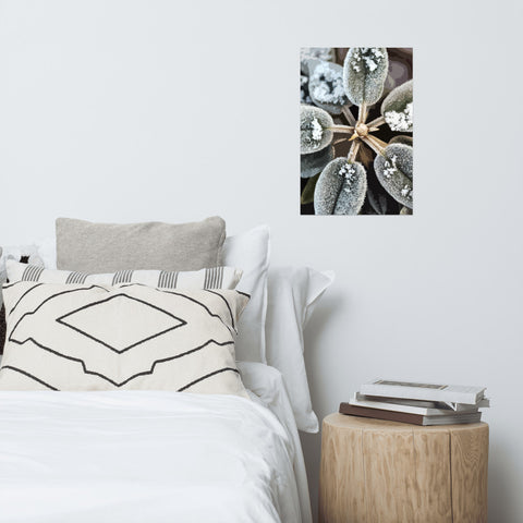 Morning Frost Premium Luster Photo Paper Poster