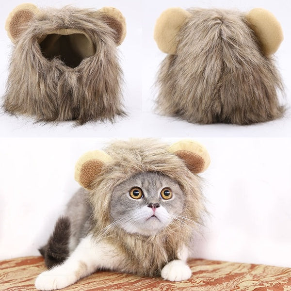 Lion Turned into Halloween Ghost Festival Pet Hat Cat Hat Velcro Adjustable Pet Supplies Autumn and Winter