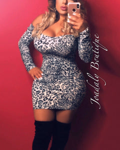 Leopard Print Long Sleeve Dress