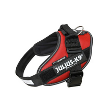 Load image into Gallery viewer, Julius K-9 IDC® Powerharness - Burgundy