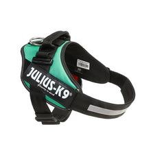 Load image into Gallery viewer, Julius K-9 IDC® Powerharness - Green Grass