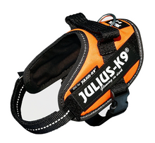 Load image into Gallery viewer, Julius K-9 IDC® Powerharness -  Neon Orange