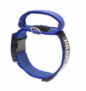 Julius K9 Collar with Handle-Blue