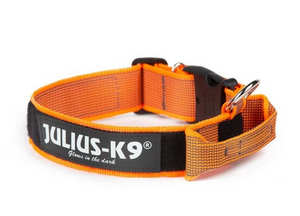 Julius K9 Collar with Handle-Orange