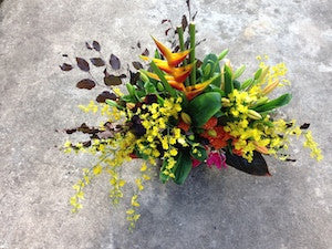 Tropical and Orchid vibrant arrangement