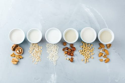 What kind of plant milk is right for you?