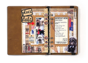 Elizabeth Craft Designs Planner Essentials Dies- Planner Essentials 11 (1655)