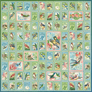 Graphic 45 Bird Watcher Collection 12X12 Scrapbook Paper - Best of Friends (4502207)