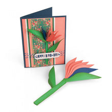 Load image into Gallery viewer, Sizzix Lynda Kanase- Framelits- Bird of Paradise, 2-D and 3-D (662782)