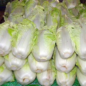Chinese Cabbage (1 piece)