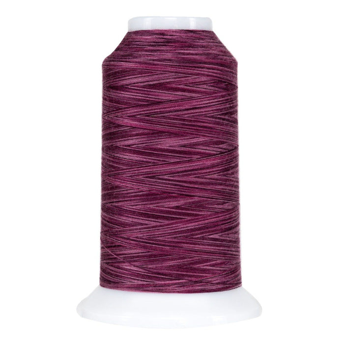 9072 Bumbleberry Omni Variegated Polyester Thread