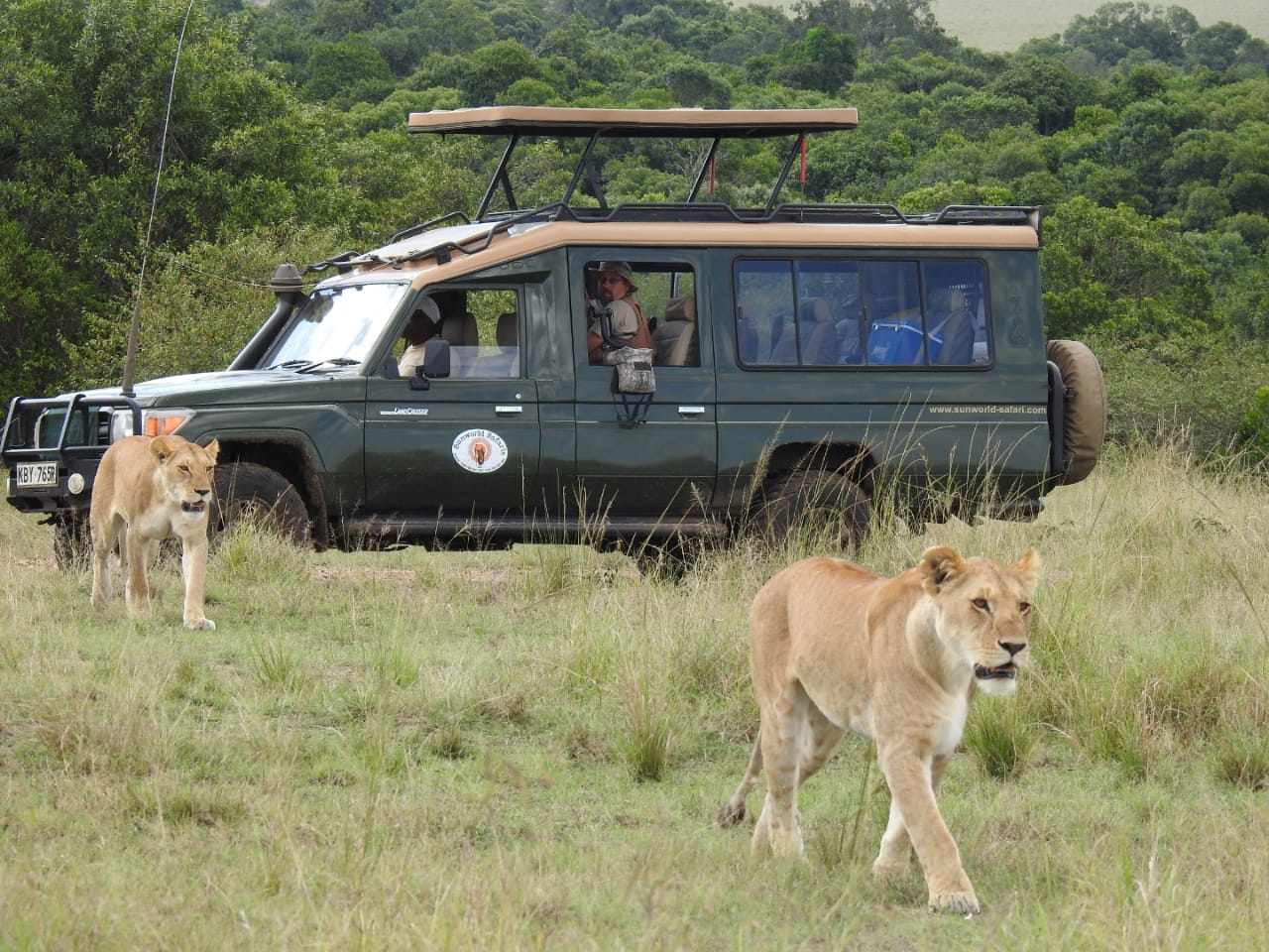 Mara Bush Camp 4 x 4 Road Package (Rate is per person sharing per night)