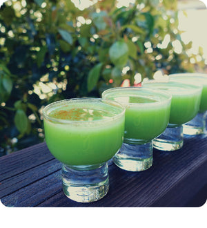 Hydrating Celery Wellness Shot
