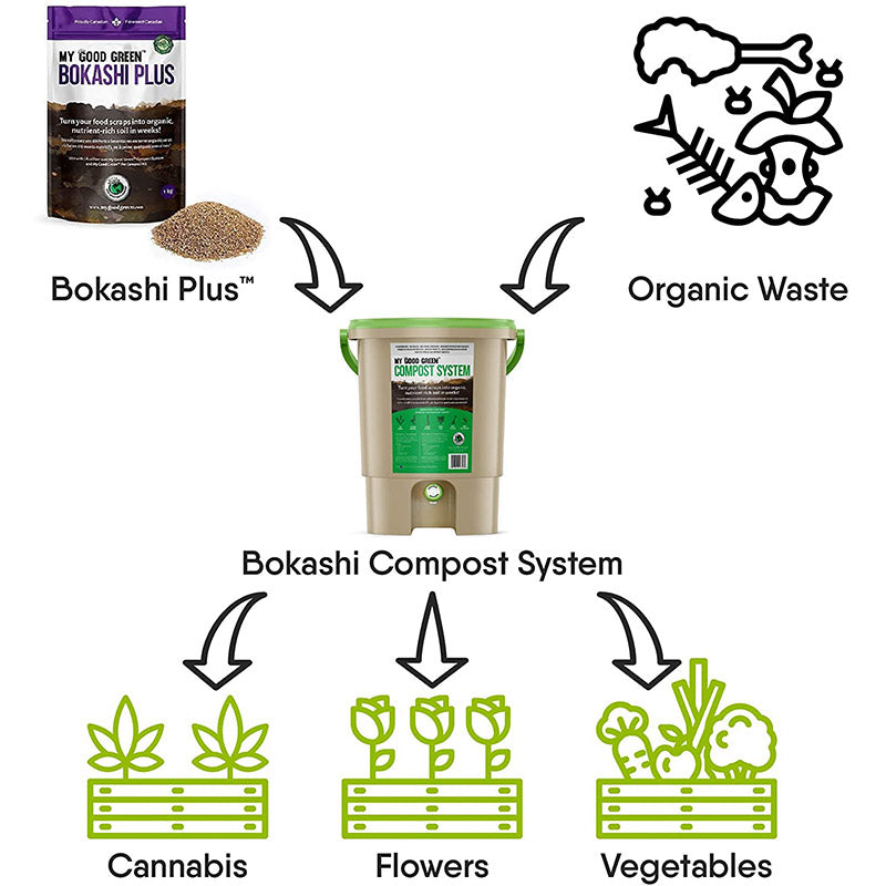 Bokashi vs Traditional Composting