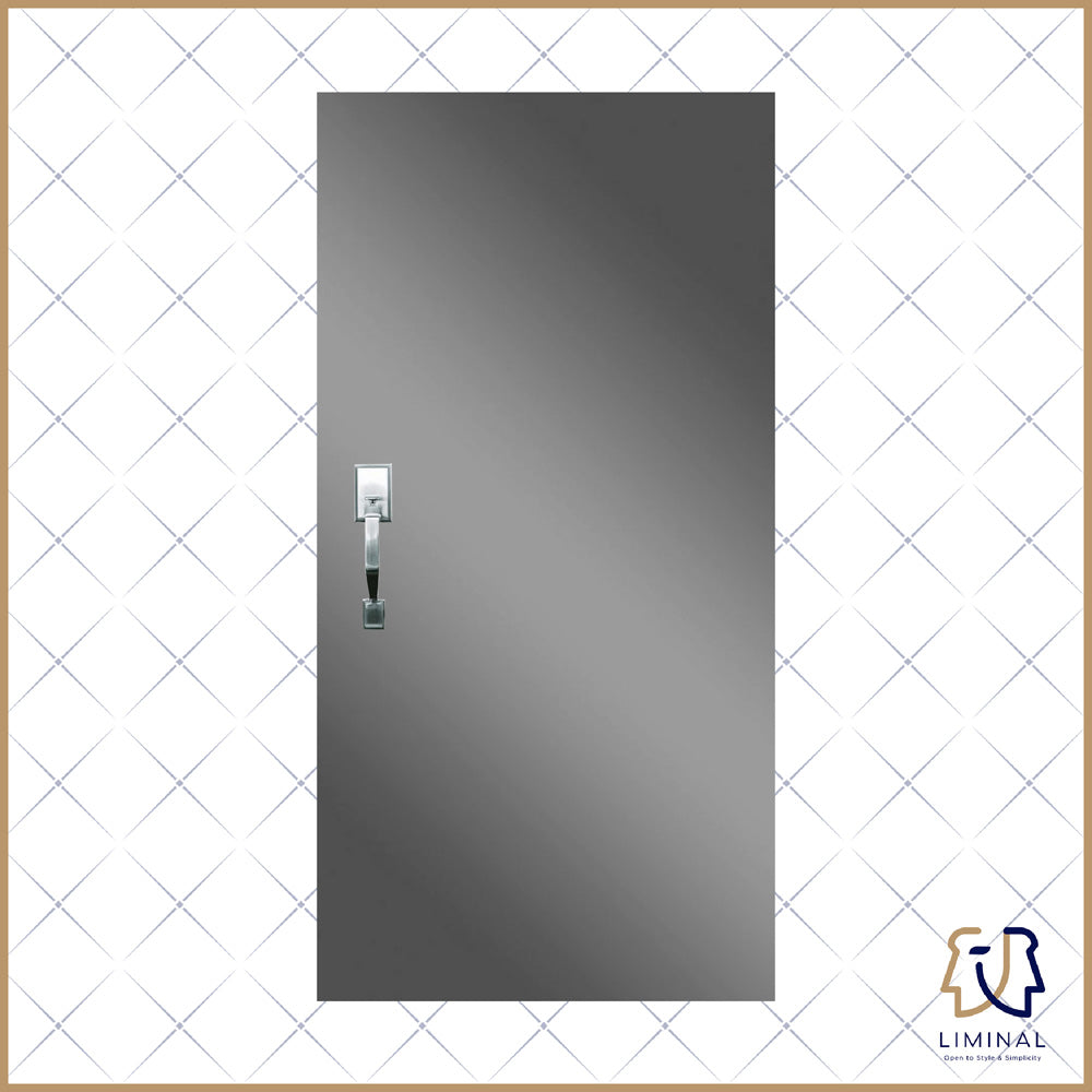 Metallic Laminate Main Door