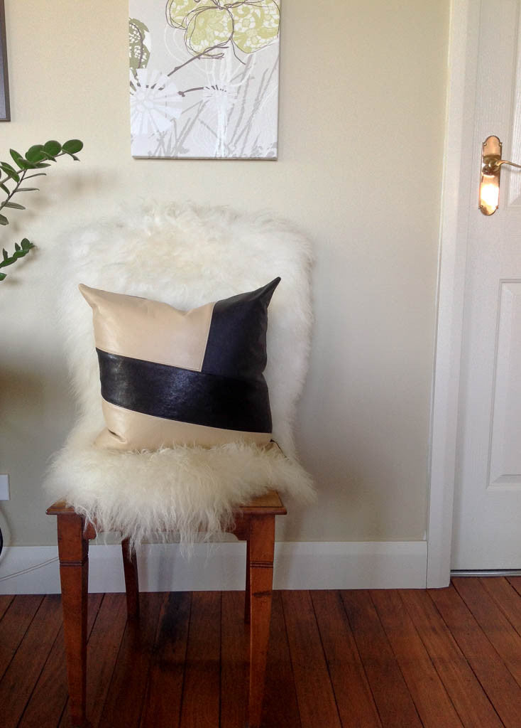 Leather Cushions