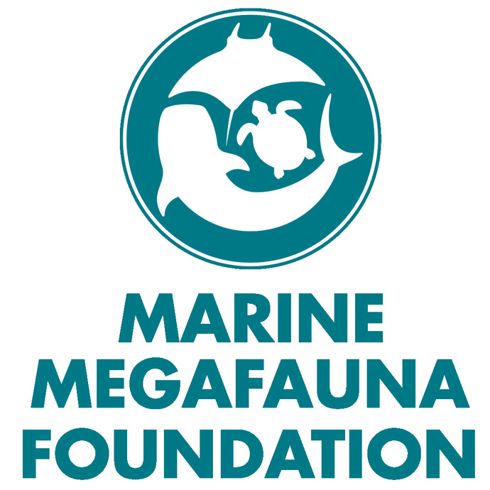 Introduction to Marine Megafauna Foundation