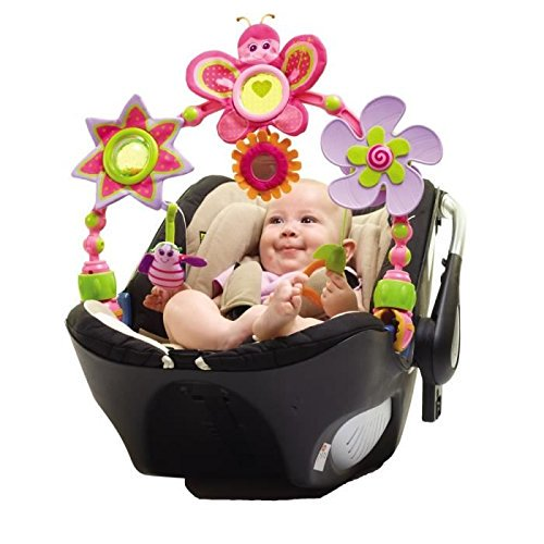 Princess Stroll Arch And Car Seat Attachment